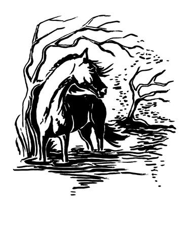 linocut: Horse Illustration