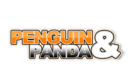 Penguin 2 0 and Panda algorithm photo