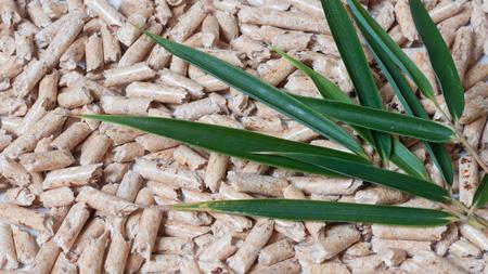 Houten korrels en groene bladeren op een witte achtergrond