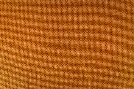 Light brown textured background. Horizontal composition.