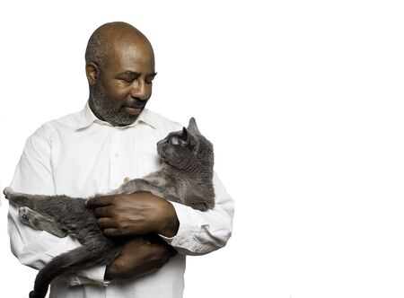 Portrait of a bearded bold African American man holding a grey cat with yellow eyes on white background with Copy-space area. Home pets, Lifestyle