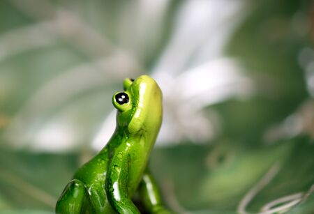 Ceramic green frog  figurine looking up against green blurry  background 스톡 콘텐츠