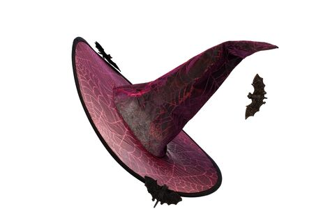 Wizard Witch hat and bats decorated with glowing spiderwebs and pointed tip. Halloween isolated