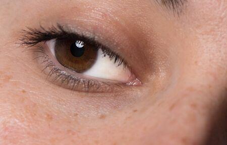 Einzelnes dunkelbraunes kaukasisches Auge mit Wimperntusche. Gesundes Auge der jungen Frauen hautnah mit Catchlight. Makroaufnahme Standard-Bild