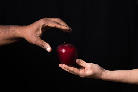 Hand gives red apple to other hand. Reklamní fotografie