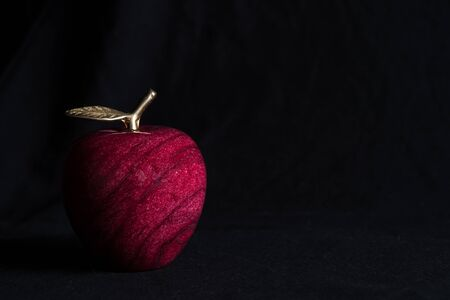 decorative marble Apple with a Golden branch and leaf on black background