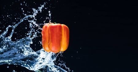 Fresh Variegated pepper gets splashed  with water on black background. Concept of summer, health and fun. Copy space Imagens