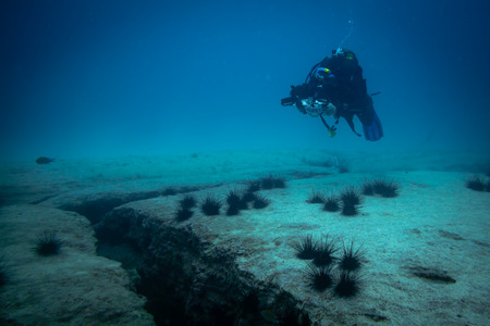 underwater photographer, corralejo fuerteventura canary islands