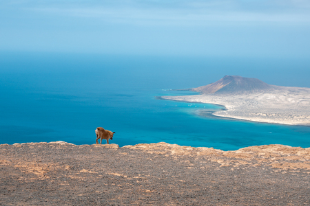 girl together with her mascot on the summit of the coast of Lanzarote