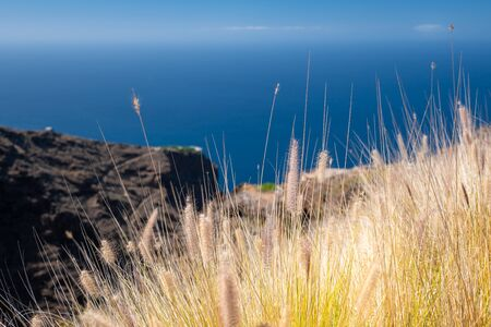 view from the top of the west coast la palma island