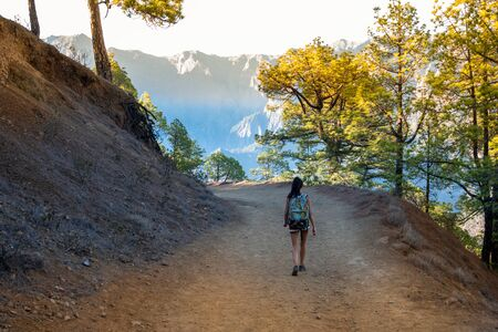 Young Active Woman Hiking Along Beautiful Green Forest Taburiente National Park