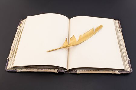 scribe: Gold feather and book on a black background.