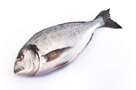 dinners: Sea fish dorade isolated on white. Stock Photo