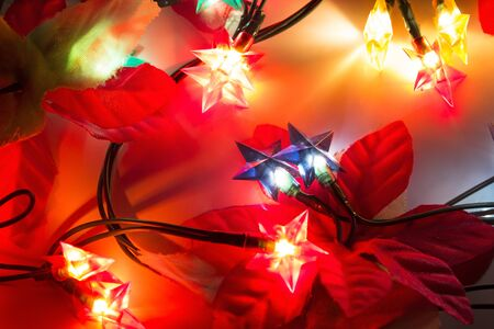 flower tree: Christmas lights garland in the form of a stars.