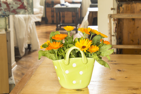 longevity drugs: Marigold in a basket on a wooden table in the living room.