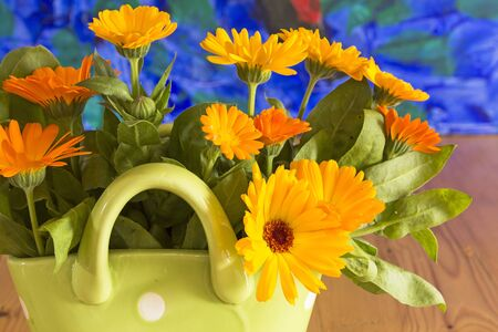 longevity drugs: Marigold in a basket on a wooden table. Stock Photo