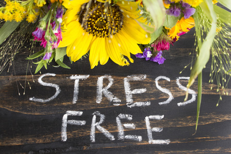 short phrase: Words Stress Free with Summer Flowers on a Rustic Wooden Background.