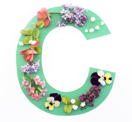 Letter C Made of Spring Flowers and Paper, on White Background.