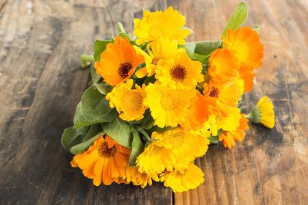 longevity drugs: Marigold, Calendula Officinalis on a Rustic Wooden Background. Stock Photo