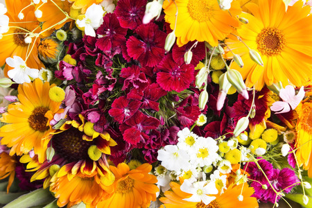 Fresh Bouquet of Spring Flowers as a Background. Standard-Bild - 101894845