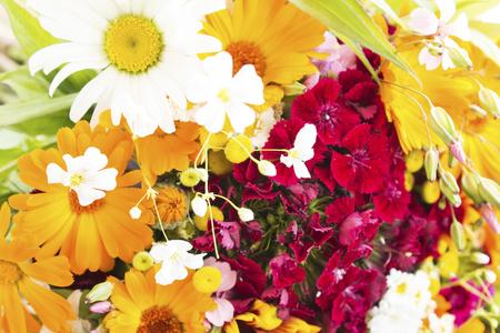Fresh Bouquet of Spring Flowers as a Background. Standard-Bild - 101908402