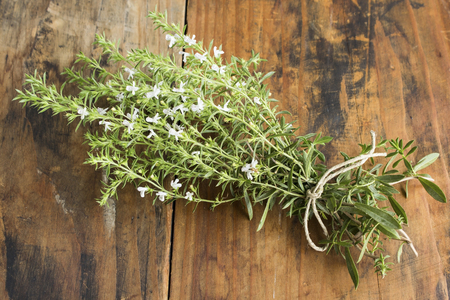 Summer Savory , Satureja Hortensis, Bunch. Standard-Bild - 104837468