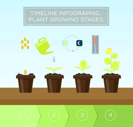 Plant growing set and infographic with icon head, thermometer, light regime.