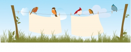 Birds Stock Vector - 18087426