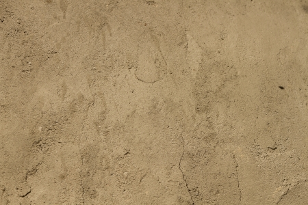 Brown ground texture  photo