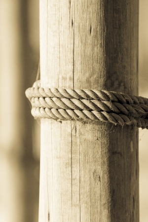 ship ropes on wood background texture photo