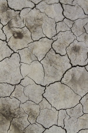Dry cracked earth, floor  photo