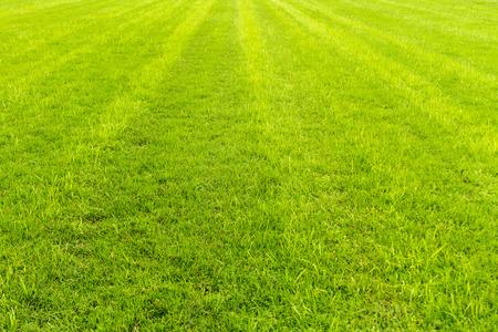 isidro: C? ? sped race track racecourse San Isidro (Argentina)