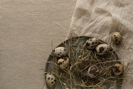 Quail eggs on hay and textile