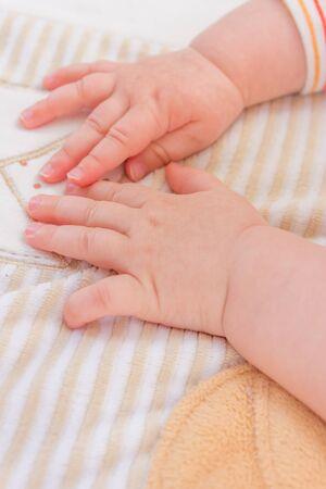 baby in hands: cute baby hands