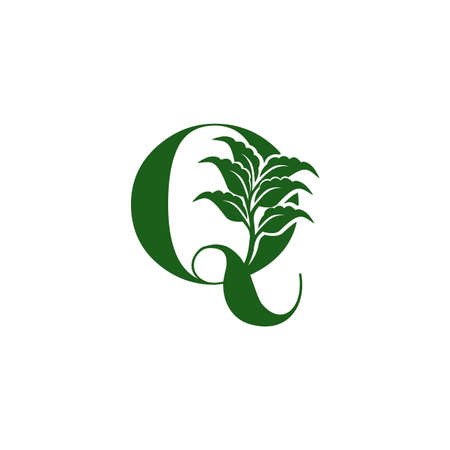 Green Letter Q  with leaf element, vector template design ecology concept
