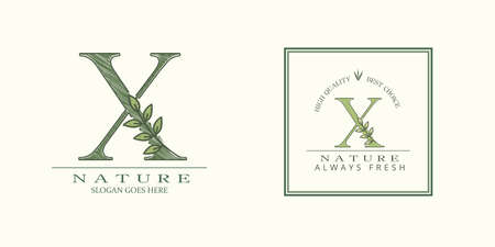 Nature Leaf Initial X Letter Logo, Vector template design concept botanical for business identity