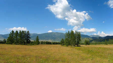 Glade Valley in Uimon in the Altai Mountains