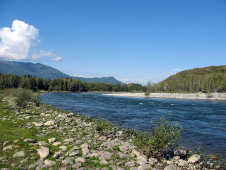 katun: Katun River in the background of blue sky