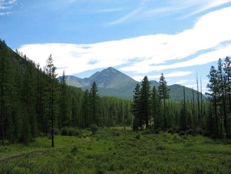 Nature Altai highlands Stock Photo