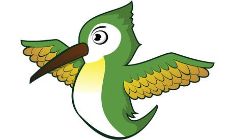 humming: humming bird