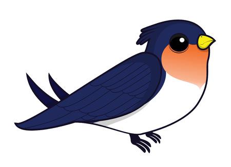 swallow: swallow