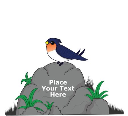 swallow bird on big rock for message