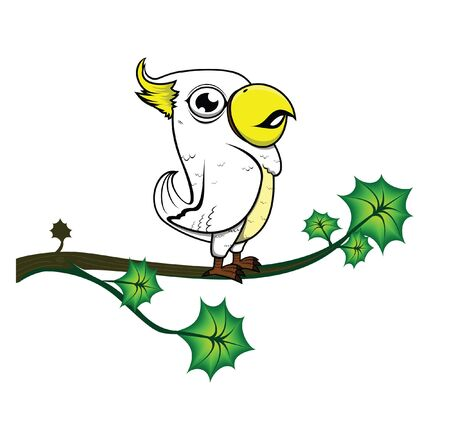 knock: parrot tree