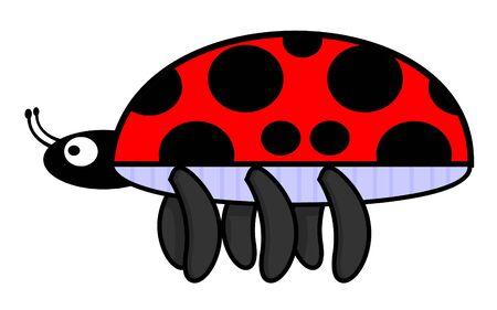 escarabajo: escarabajo  Vectores