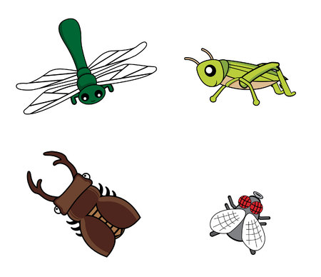 locust: insect set fly.dragonfly.grasshopper.stag beetle