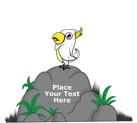 for: white parrot on big rock for message