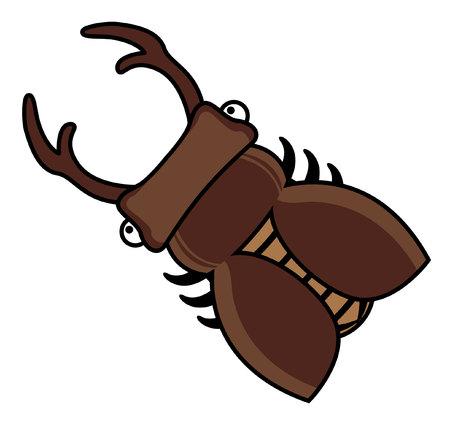 stag beetle: stag beetle Illustration