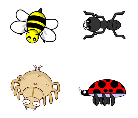 arachnid: insect set bug.bee.ant.spider