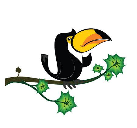toucan: toucan tree
