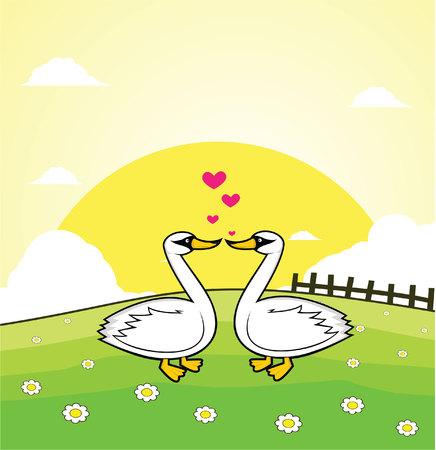 grass land: cisne pareja rom�ntica con el fondo de la tierra hierba